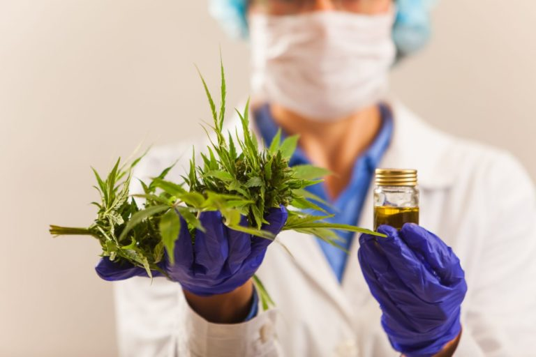 Medical Cannabis – Adoption of the Amendment to the Swiss Law on Narcotic Drugs (Cannabis-based medicines)